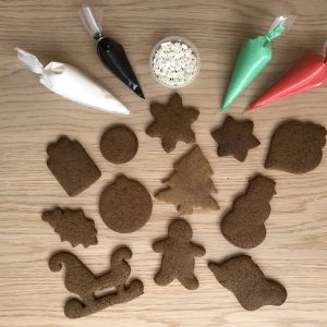 Xmas Biscuit Decorating Kit